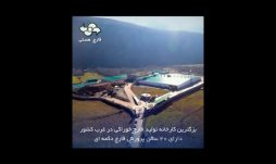 قارچ کشت اورامان سبز- کردستان
